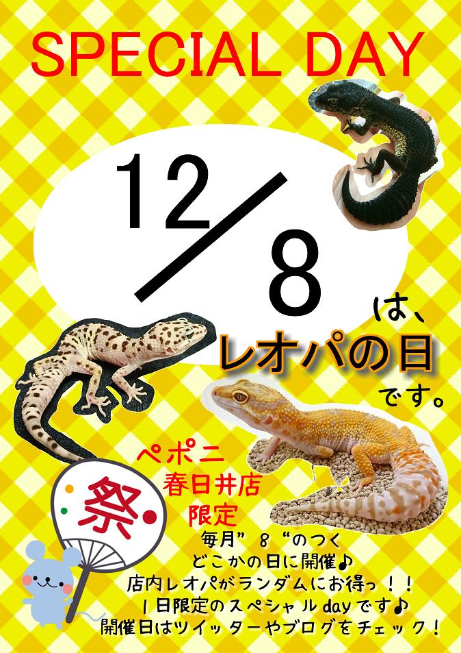 【春ペポニ】明日はいよいよ【レオパの日】です!!