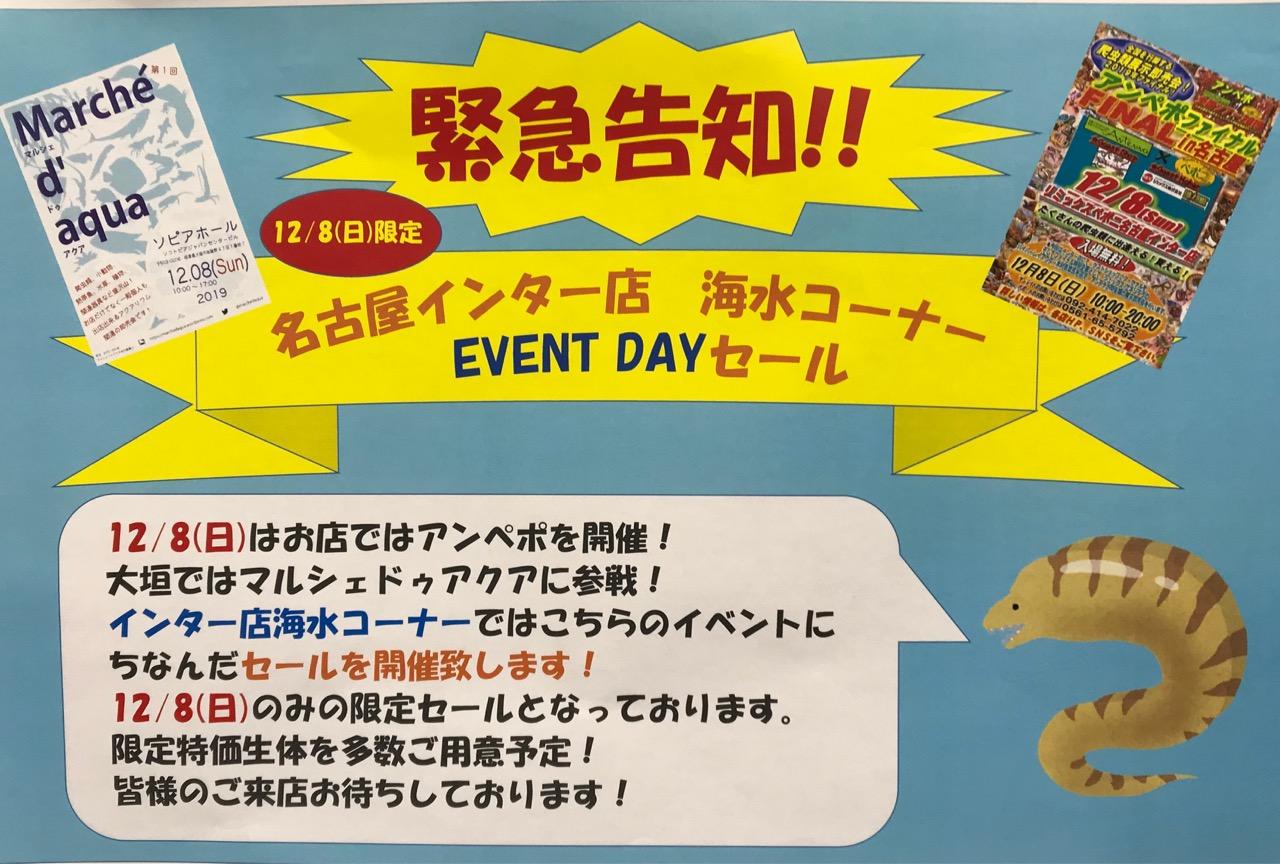 新商品予告と週末イベント情報!