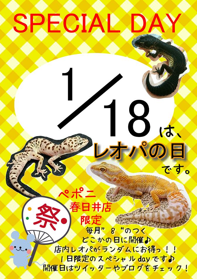 【春ペポニ】もうすぐレオパの日!!