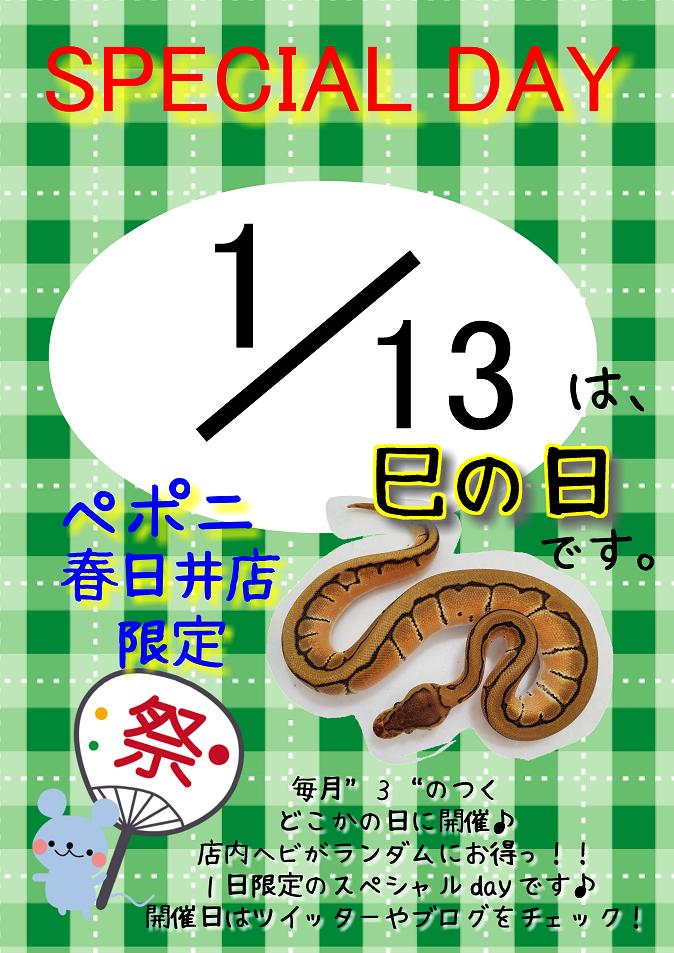 【春ペポニ】明日は巳の日!!