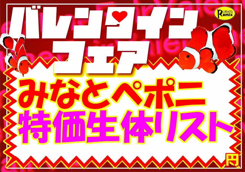 【バレンタインフェア】リスト@みなとペポニ