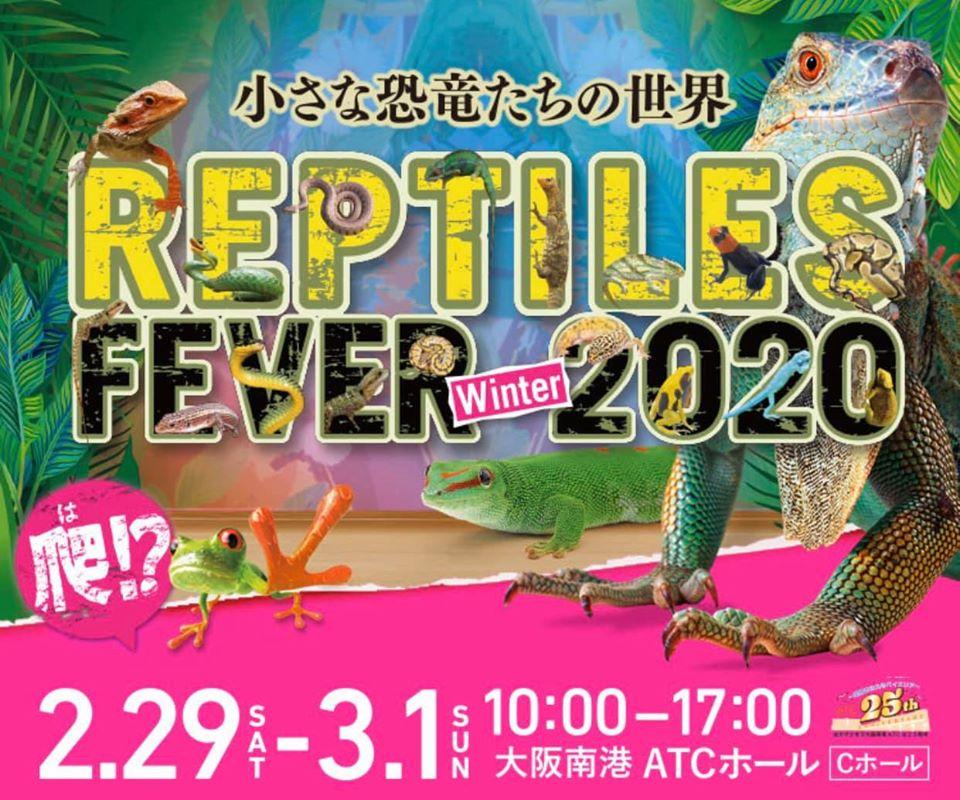 2/29-3/1は大阪南港ATCにてレプタイルズフィーバーWinter!