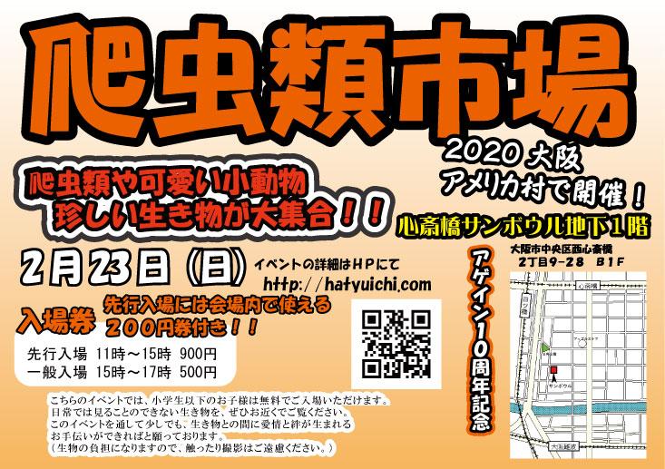 今週末2/23(日)は爬虫類市場大阪アメ村!