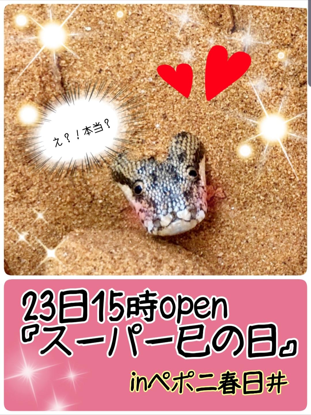 """【春ペポニ】23日は""""スーパー巳の日""""ヘビがお得っ!!"""
