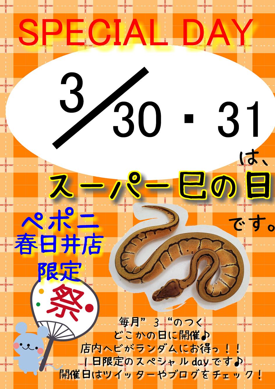【春ペポニ】今月最後はスーパー巳の日で!!
