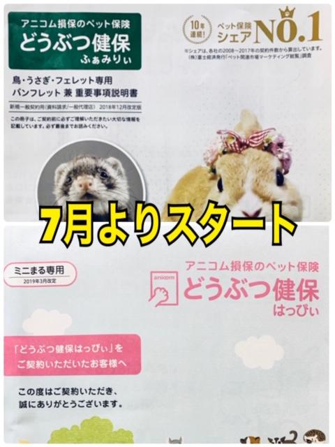 【春ペポニ】ペット保険はじめました。