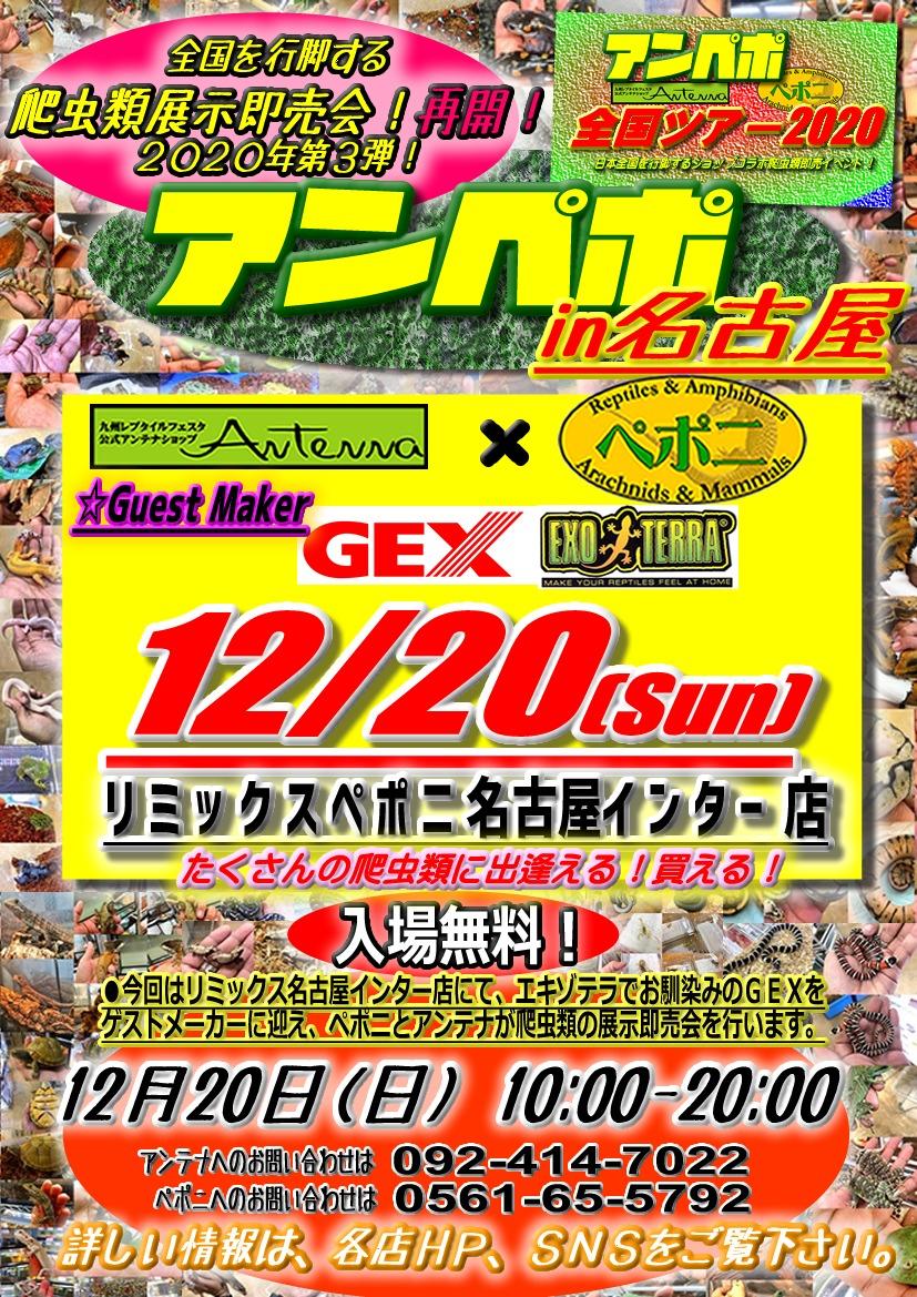 【イベント告知】アンペポin名古屋!!12/20アンペポ再始動!
