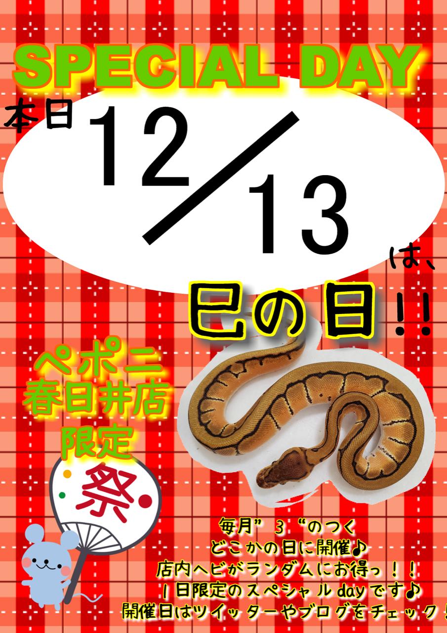 【春ペポニ】久しぶりの巳の日開催!