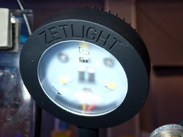 小型LEDライト入荷!!