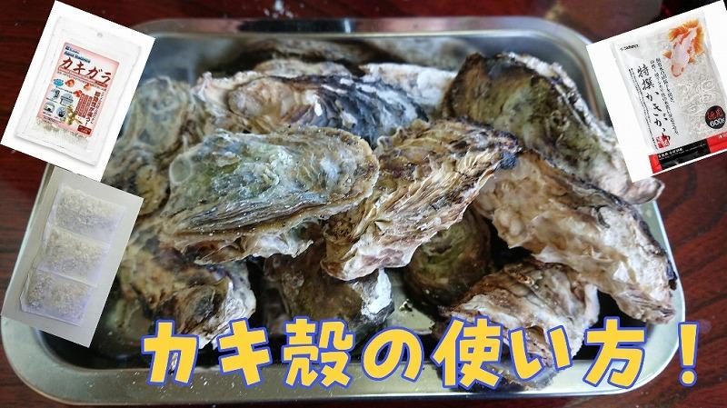 牡蠣の力!!