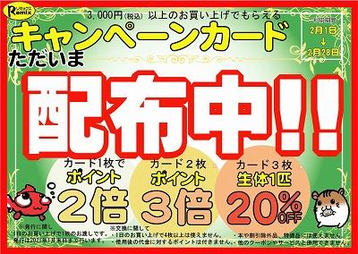 集めておトクなキャンペーンカード配布はあと4日!お急ぎを!!
