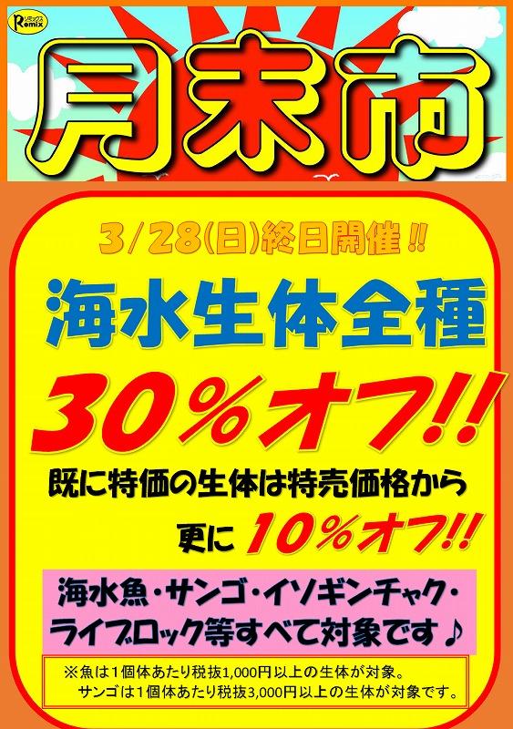 みなと海水生体30%オフ!!