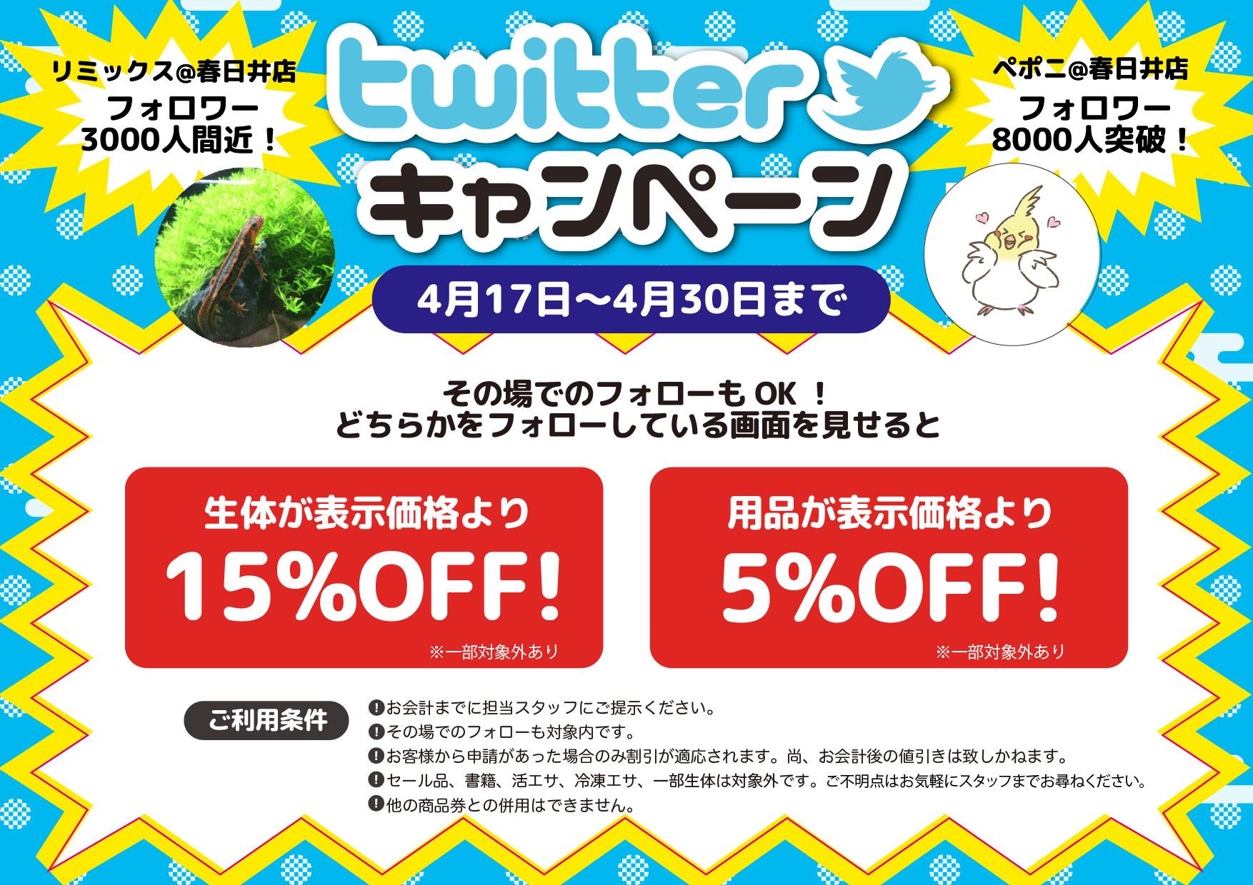 【春ペポニ】Twitter企画始動!【春日井店限定】