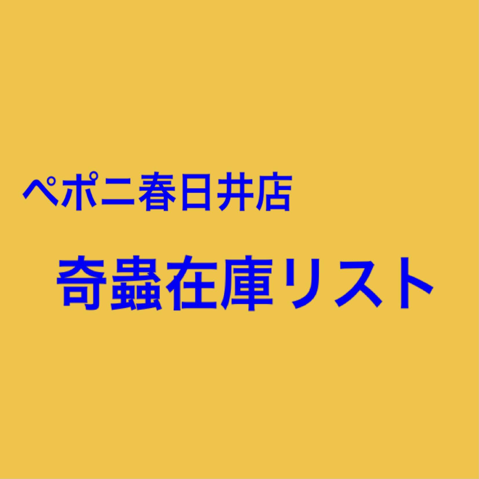 【春ペポニ】店内在庫リスト(奇蟲編)