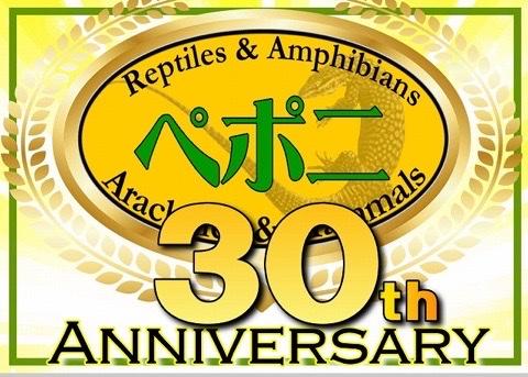 【インター小動物】お陰様でペポニ30周年!