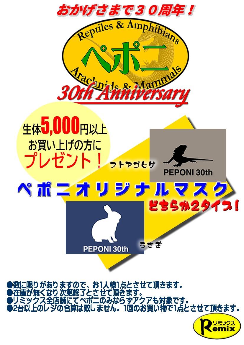 ペポニ30周年ノベルティ第1弾!!5/14スタート!
