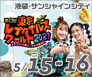 【春ペポニ】トウレプ2021お品書き