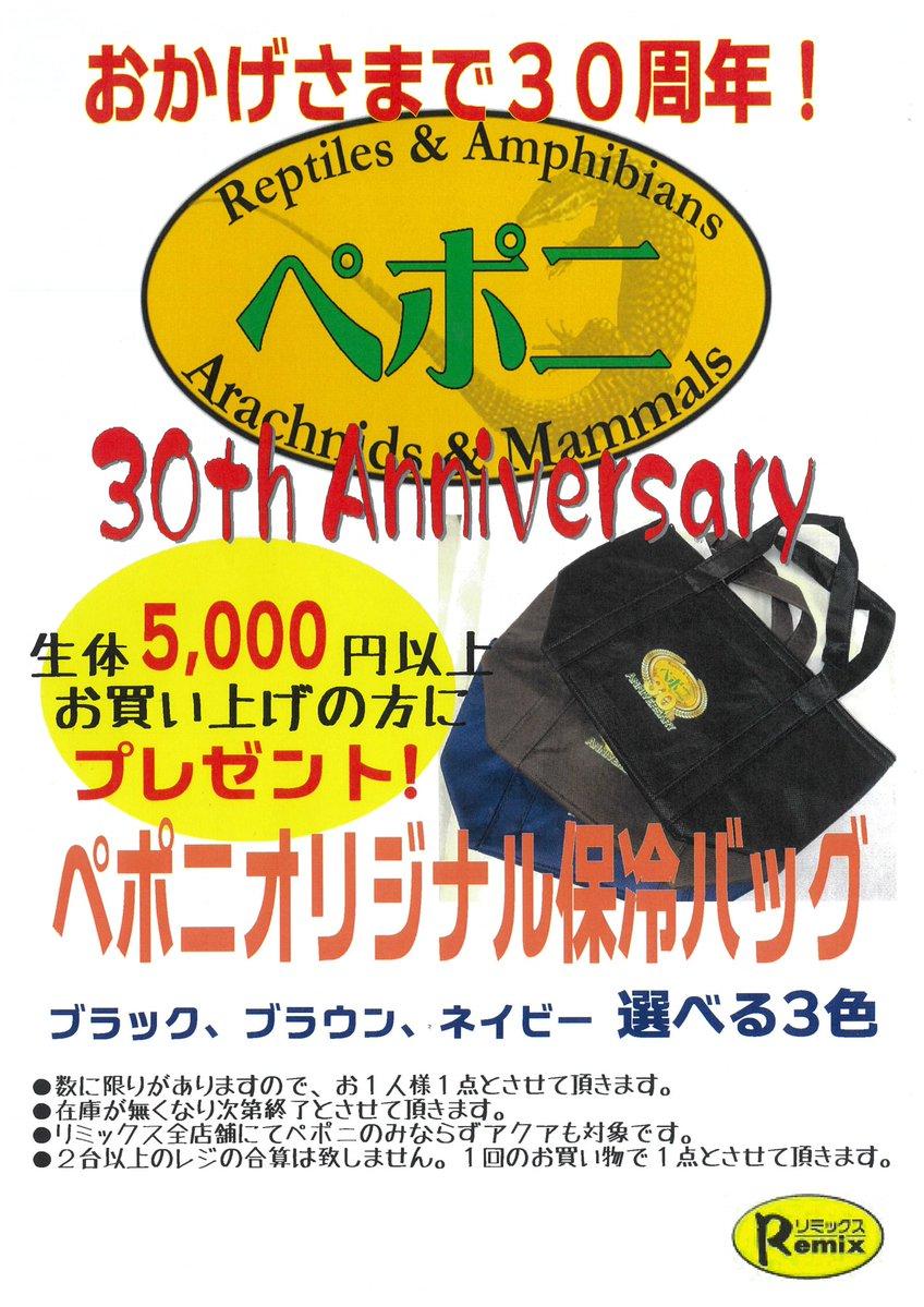 ペポニ30周年ノベルティ第2弾!!6/14スタート!