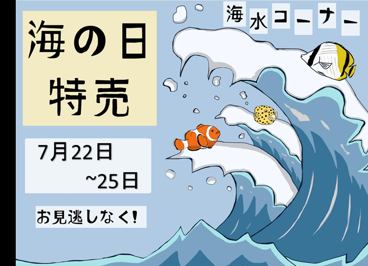 海の日特売!!