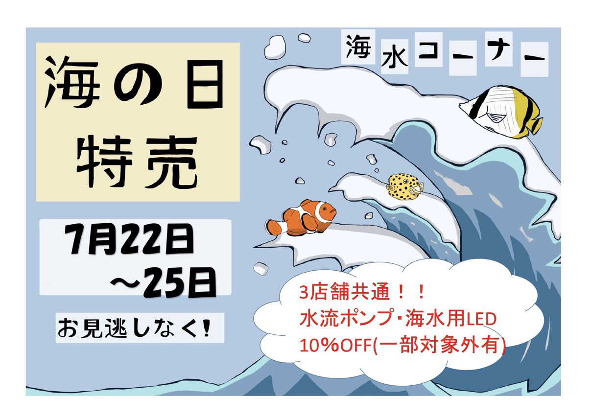 【セール告知】海水だより~海の日!!~