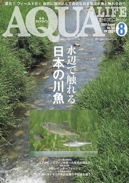 夏の風物詩「川魚」!
