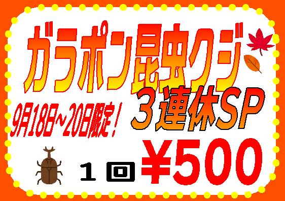 【インター小動物】昆虫クジ3連休SP!